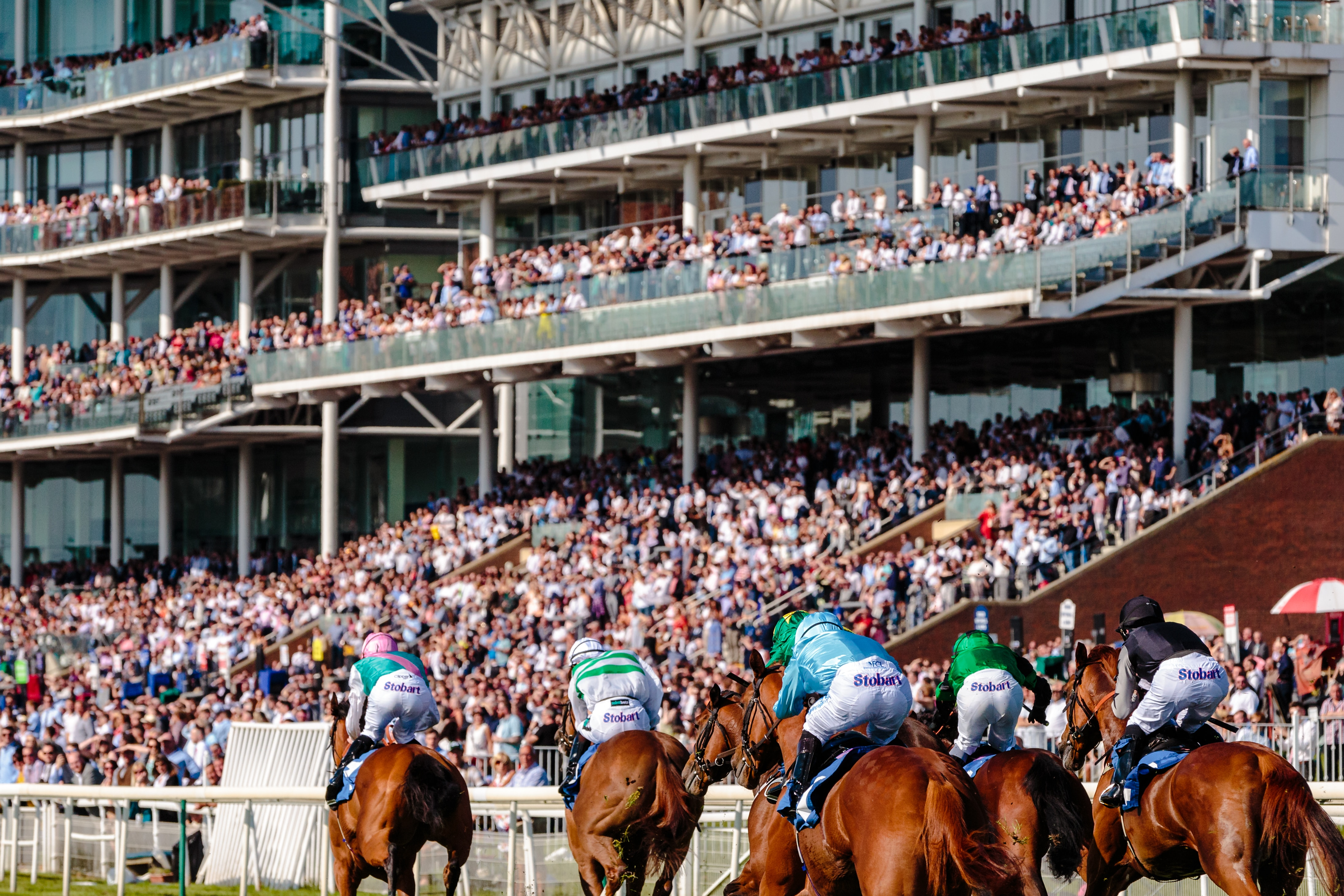 Gentleman's Guide to Betting at the Races