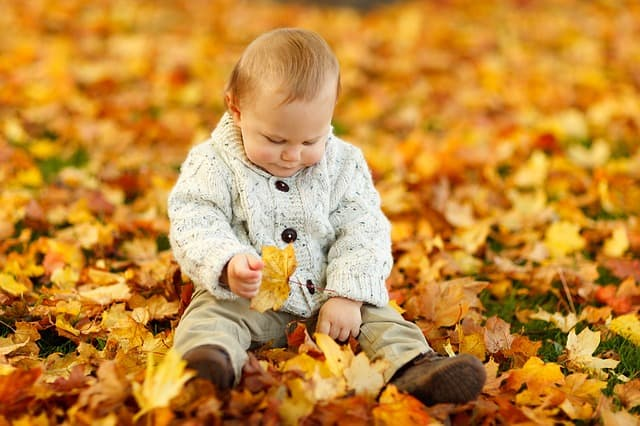 autumn 165184 640 - 10 Tips For A New Dad
