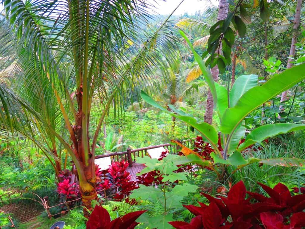 10272532 10102093554092753 248395964362649089 o 1024x768 - Luxury Vacations on Bali