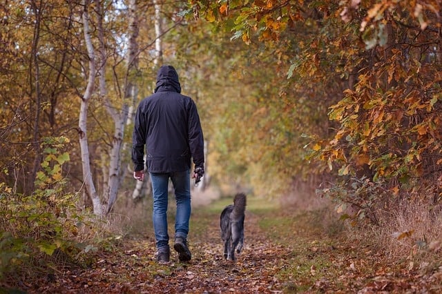 autumn walk 1792812 640 - Don't Wait for the New Year: Start your Exercise Routine Now