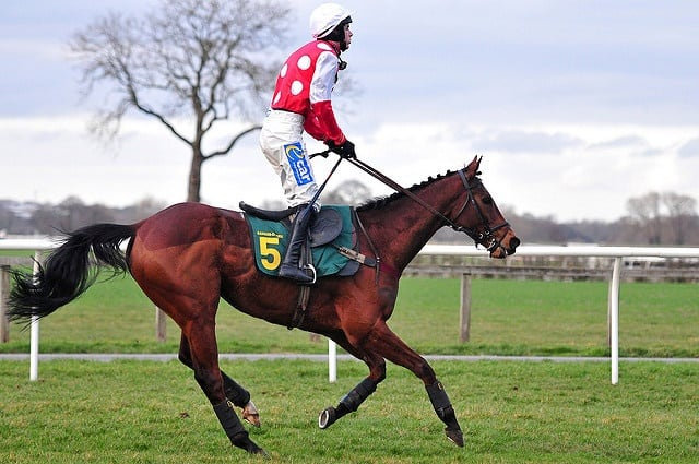 3309233075 3be9b89b9b z - The Ultimate Grand National Day Out