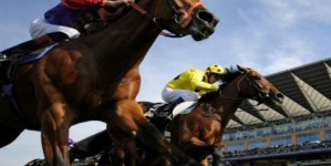 DARK HORSES AT THE CHELTENHAM FESTIVAL 2017
