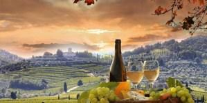 Best International Wine Festivals You Should Be Attending