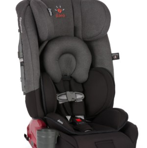 Driving My Nieces Around With The Diono Radian RXT Car Seat