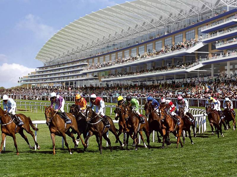 horses - How to Behave at Royal Ascot