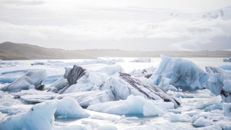 Facts About Cruising to Antarctica