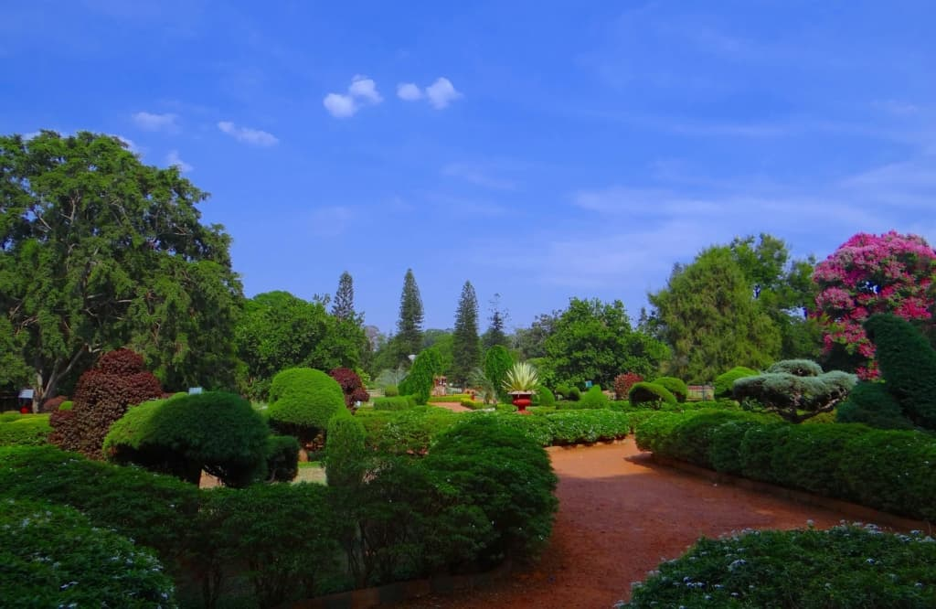 Bangalore Botanical garden 1024x666 - It's official: Bangalore is the world's most dynamic city. But what does it offer expats?
