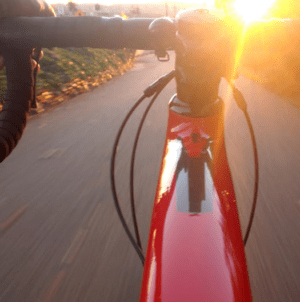 5 Reasons Everyone Should Own a Bicycle