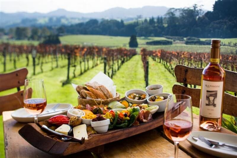 Travel Destinations for Wine Lovers in New Zealand - Best Travel Destinations for Wine Lovers