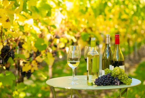 Travel Destinations for Wine Lovers in US 1 - Best Travel Destinations for Wine Lovers