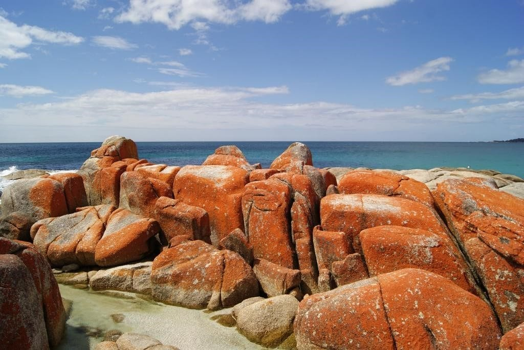 Bay of Fires Walk 1024x684 - 8 Hiking Places in Australia for a Perfect Active Holiday