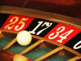 novice gambler
