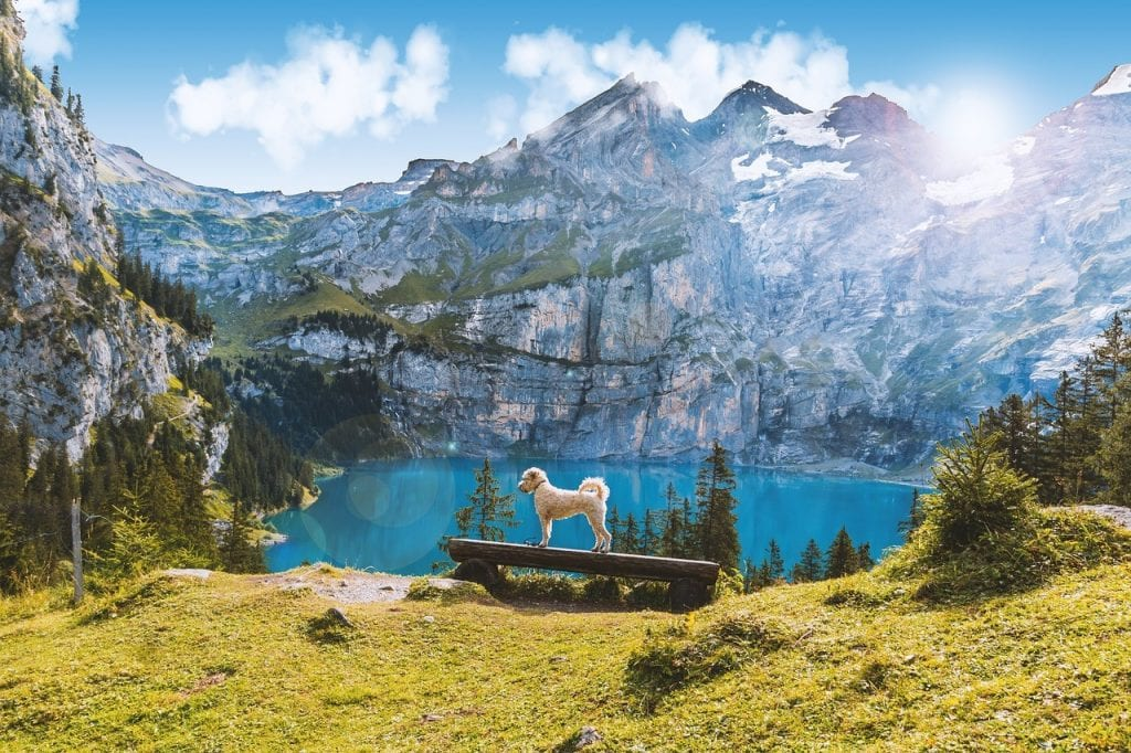Switzerland 1024x682 - Top Travel Destinations 2019 for Active Travelers