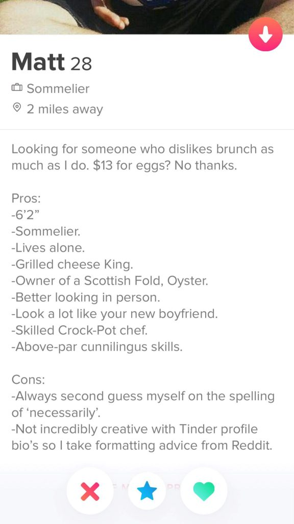 Pros and cons 576x1024 - 10 Best Tinder Bio Examples for Guys (To Make Her Swipe Right)