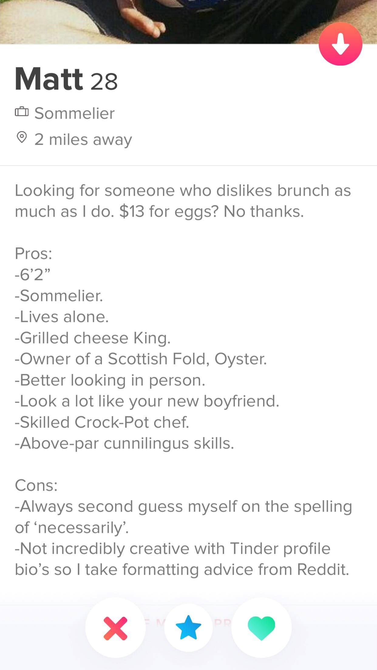 10 Best Tinder Bio Examples for Guys (To Make Her Swipe