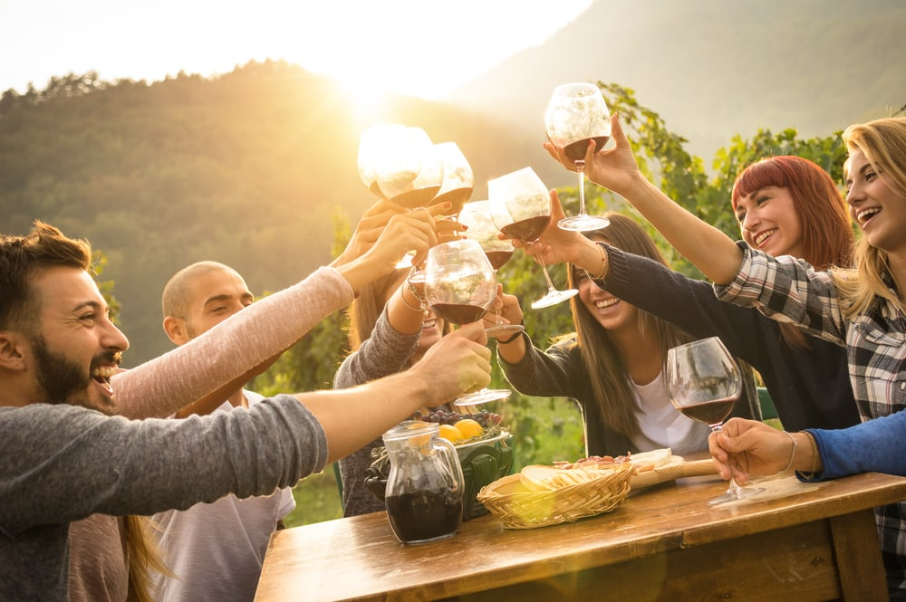 shutterstock 486675022 - Discover 4 of the Best Vineyards in the UK (Where to Eat, Drink and Stay this Winter)