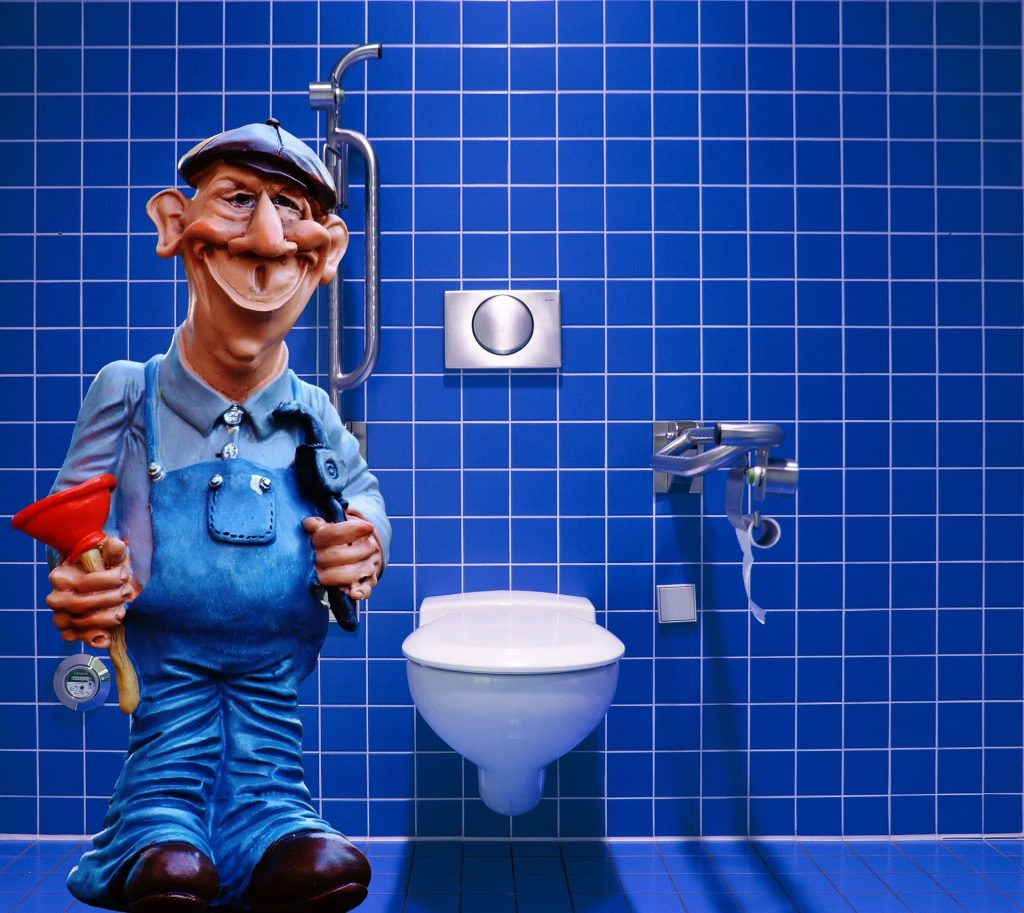 Clogged Toilet 1024x913 - How to prevent clogged pipes