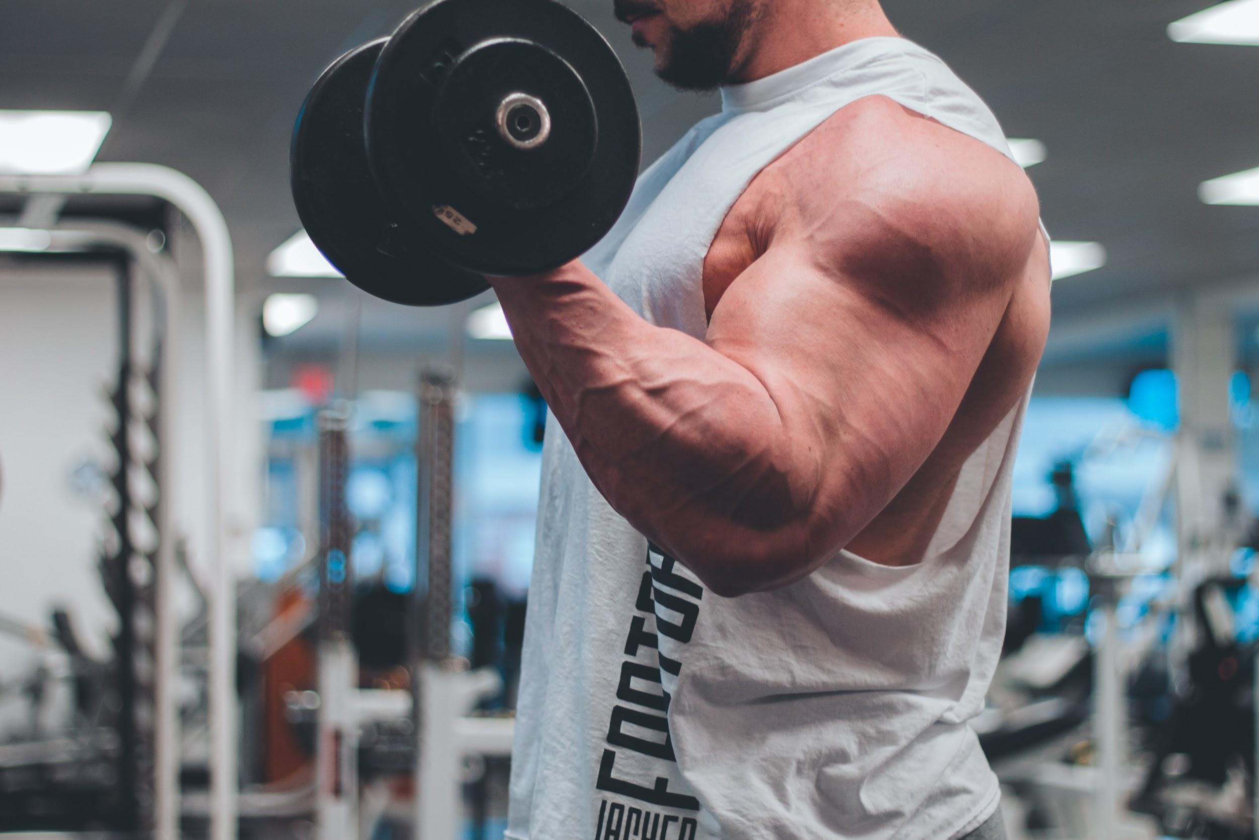 Gentleman's Supplement Guide to Building Muscle