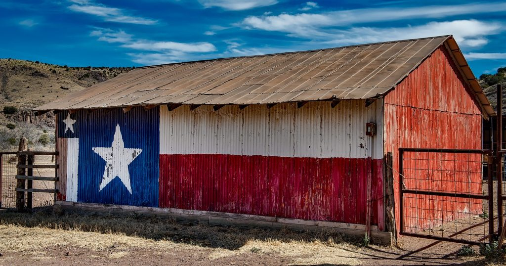Relocating to Texas 1024x538 - A Lone Star Guide to Relocating to Texas
