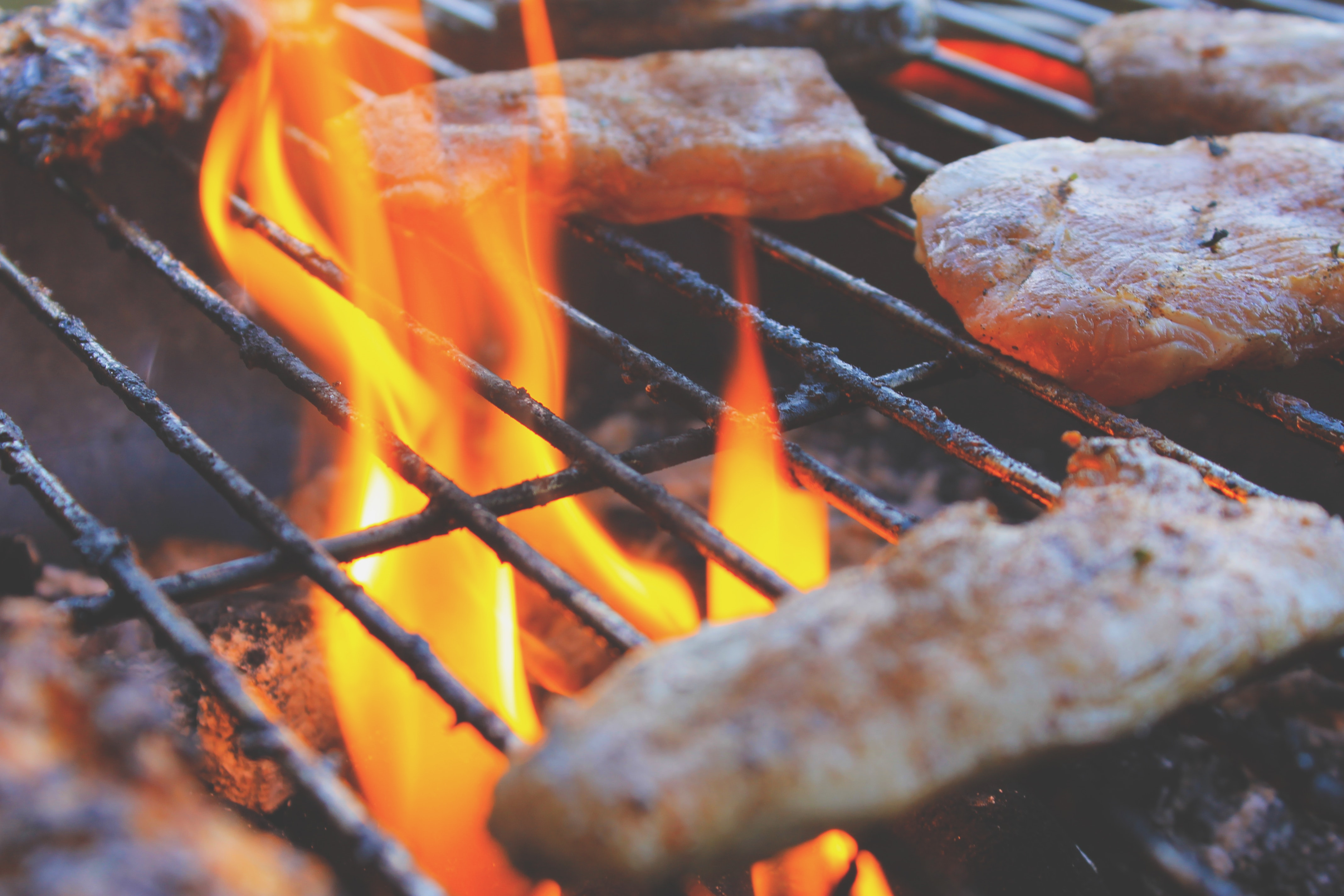 Tips for Choosing the Best Grill for Your Needs