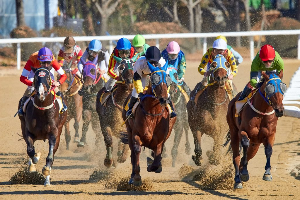 Race Horse 1024x683 - Why Is Horse Racing An Interesting Form Of Sports Tournament?