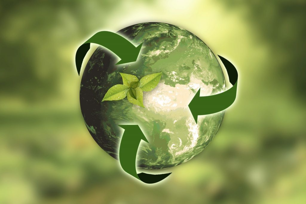 Sustainable Practices 1024x682 - What is the Importance Of Sustainable Practices