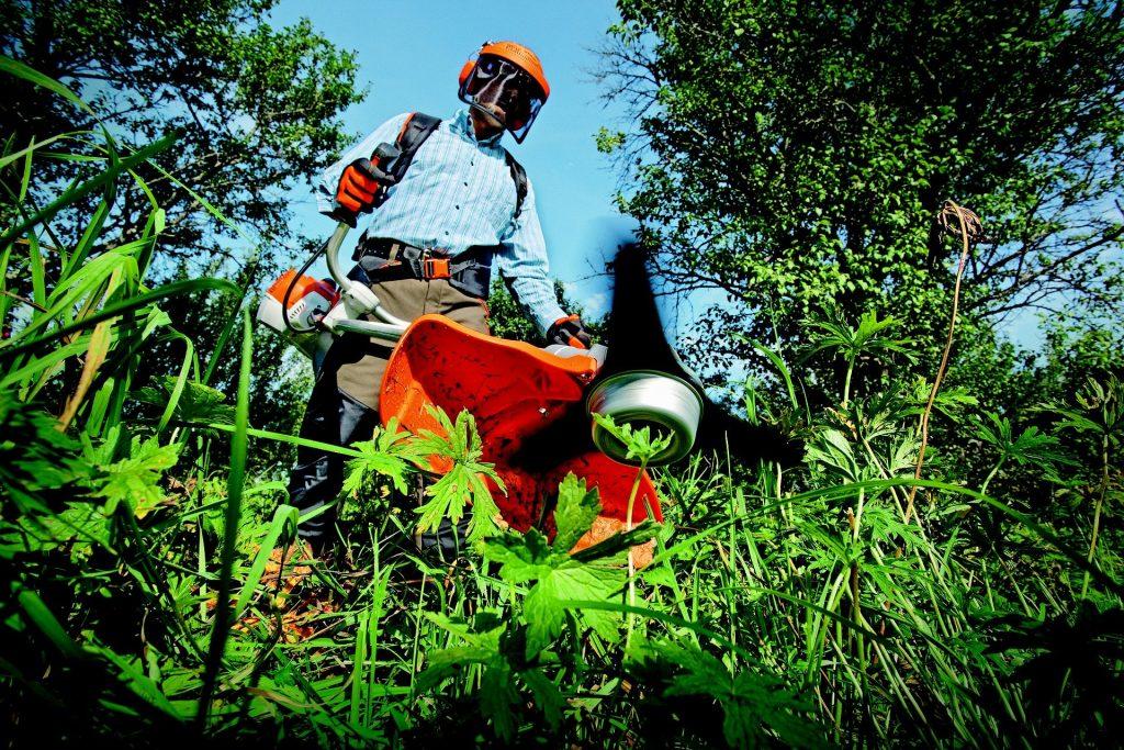 Gardening Essentials for Men 1024x683 - Top 5 Gardening Essentials for Men