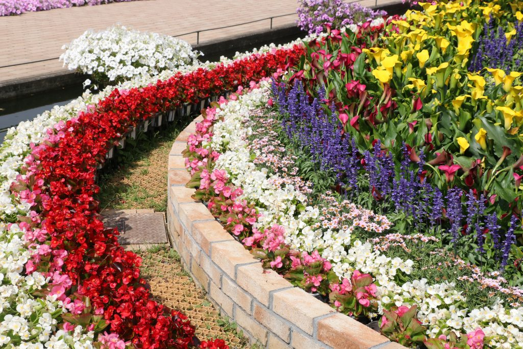 flowers 1024x683 - Landscaping Ideas That Will Make Your Home Breathtaking