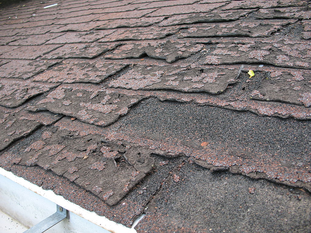 1024px Failure of asphalt shingles allowing roof leakage - How to Tell if You Need a Roof Replacement