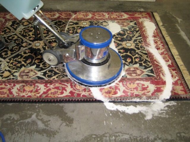 Top Reasons to Employ a Professional Carpet Cleaner