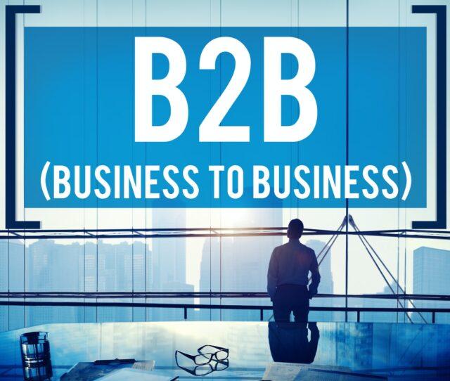 What is B2B Portal Development?