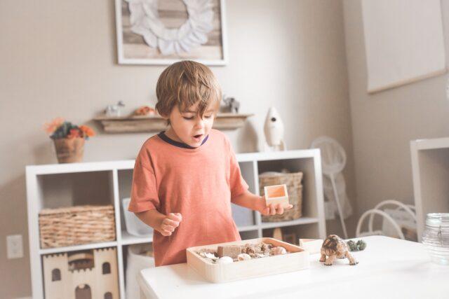 How to choose A Montessori School in Brooklyn?
