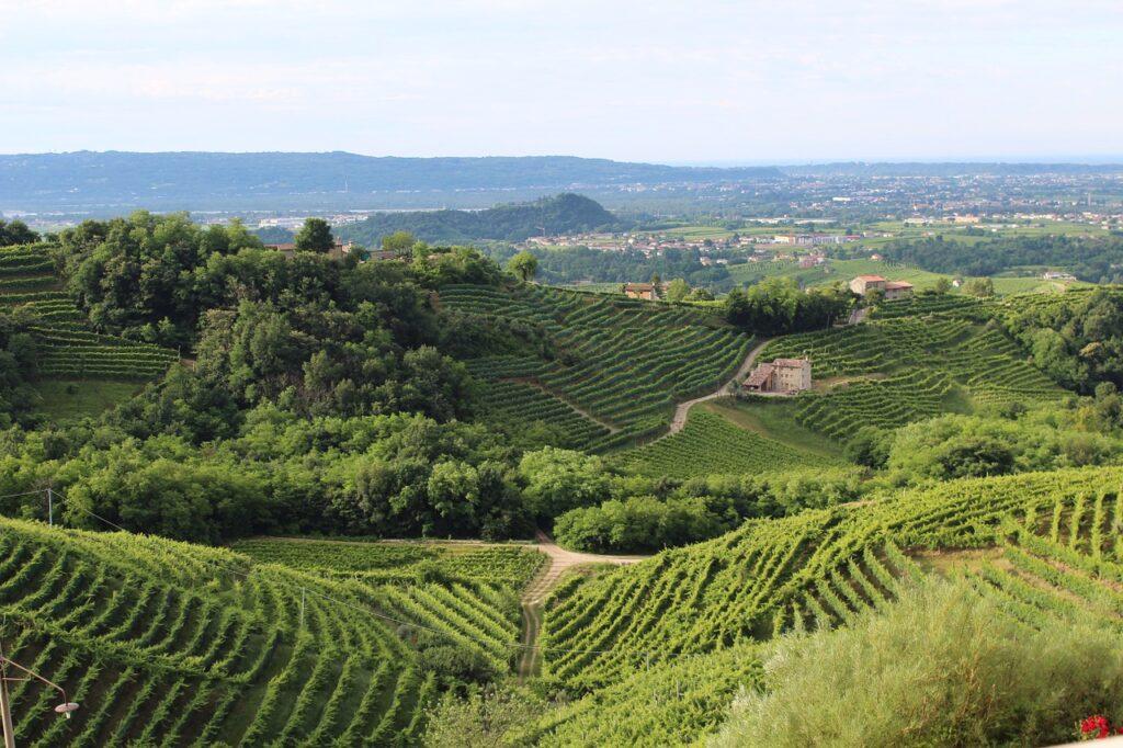 italy 1331284 1280 1024x682 - The Best Regions for Italian Wine